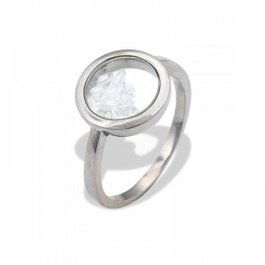 STAINLESS STEEL CASE RING